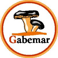 Camprecios - partners - Gabemar